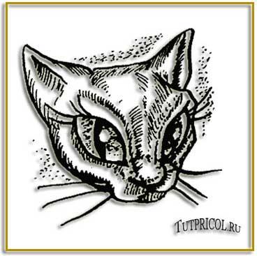 картинки татуировок