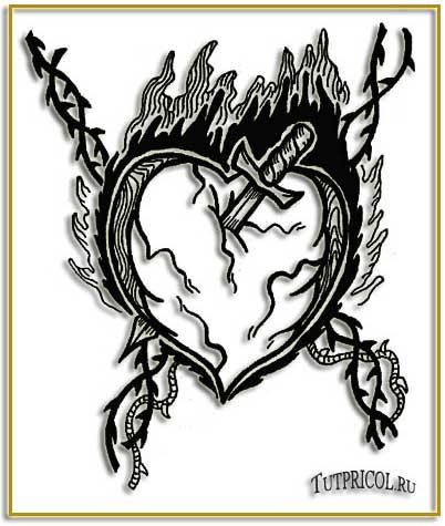 картинки tatu